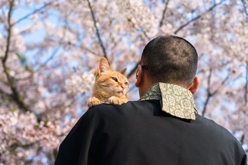 寺の住職に抱かれている猫