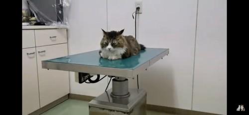 病院で予防接種