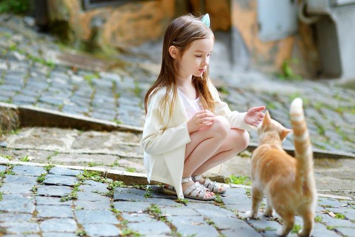 女の子に尻尾を立てたポーズをする猫