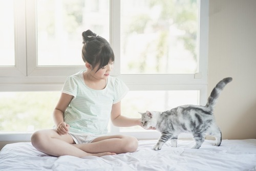 近寄る猫を撫でる女の子