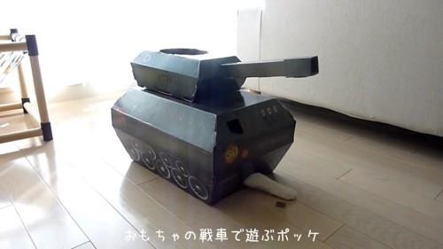 猫の前足が出ているおもちゃの戦車