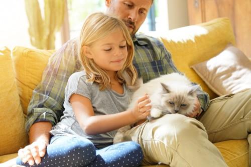 父親と猫を撫でる少女