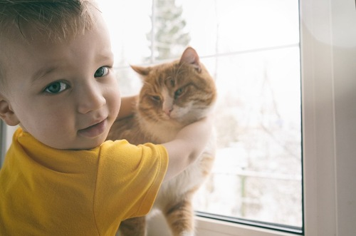 猫に抱きつく赤ちゃん