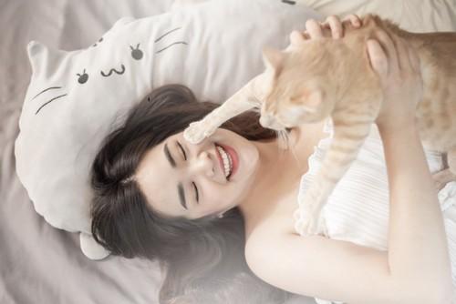 人に抱えられる猫