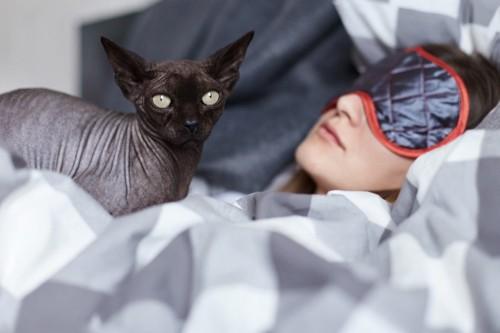 アイマスクの飼い主と猫