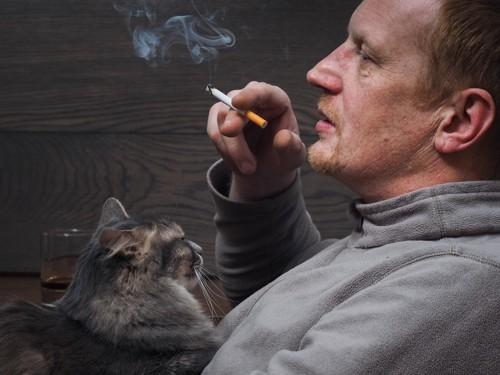 タバコを吸った男性に抱かれる猫