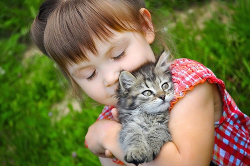 子猫を抱っこして目を閉じる女の子
