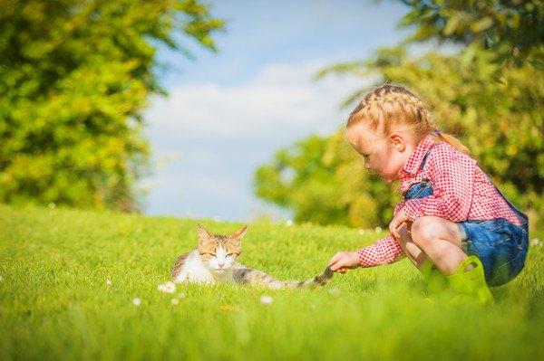 外にいる猫と子ども