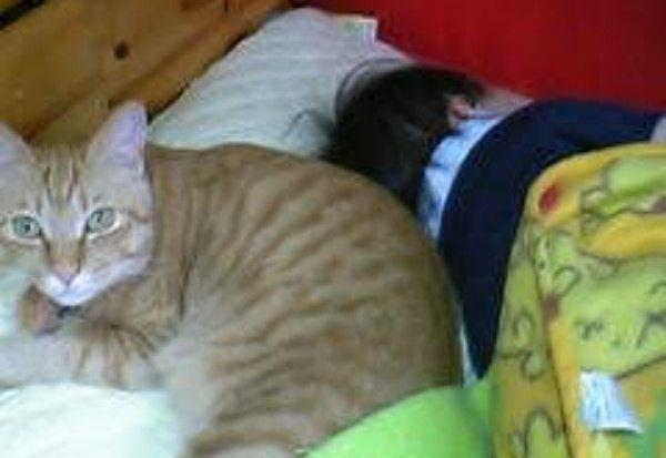 三男が生まれて頭の近くでいつも寝ていました
