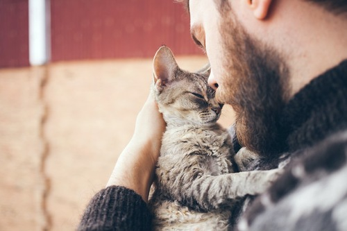 猫を抱いて見つめ合う男性
