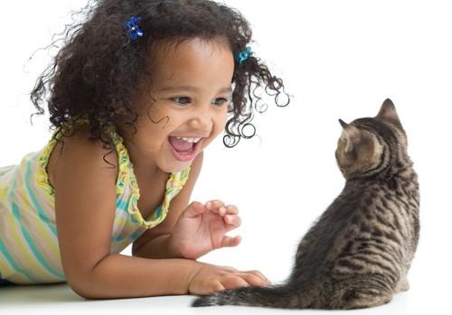子猫を見て微笑む女の子