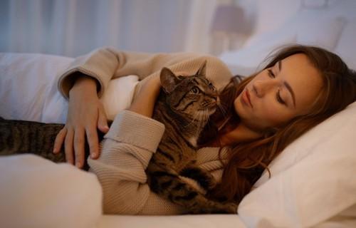 ベッドで飼い主と寝る猫