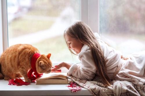 窓際にいる少女と茶トラ