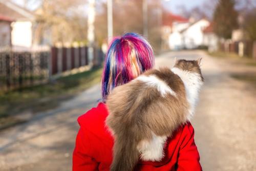 飼い主におんぶされて外に出かける猫