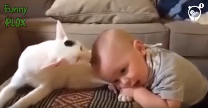 頭を差し出す赤ちゃん