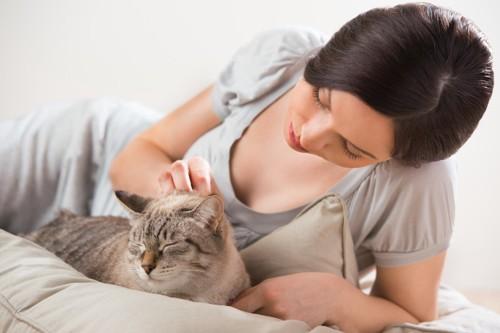 猫をみる女性