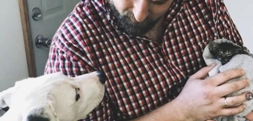 犬と男性に抱っこされて寝る子猫