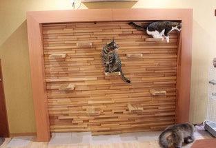 猫用アスレチック