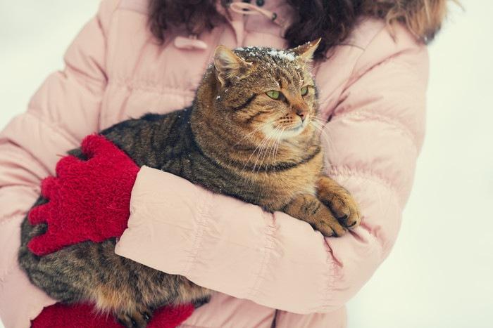 手袋をはめた女性に抱かれる猫