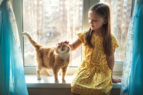 女の子になでられている猫