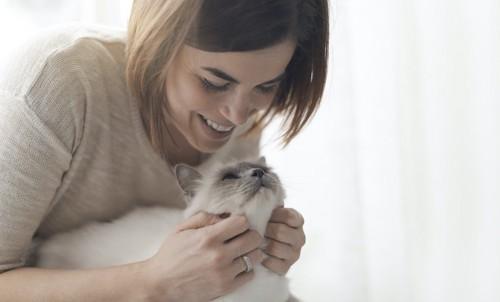 猫を後ろから撫でている女性