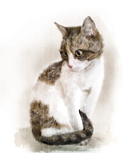 見つめる猫のリアルなイラスト