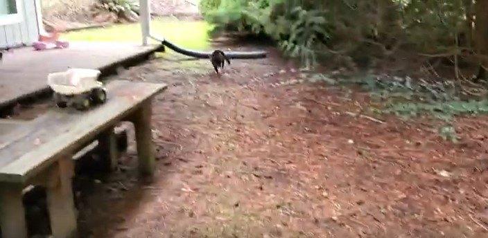地上を走るブーツ