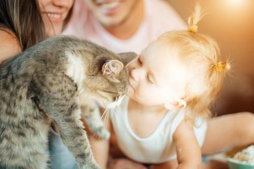 人間の赤ちゃんにキスされる猫