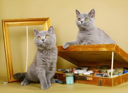 額と画材と2匹の猫