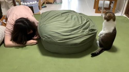 クッションに隠れる女性と後ろ足で立つ猫
