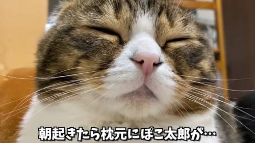 目を閉じる