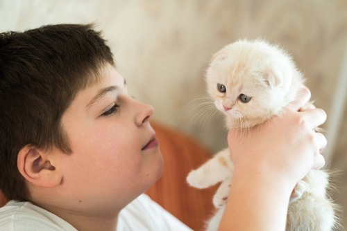 猫を抱く男児