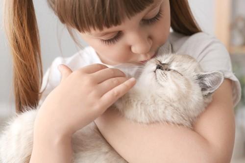 少女に抱きしめられる子猫
