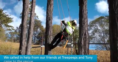 木に登る男性