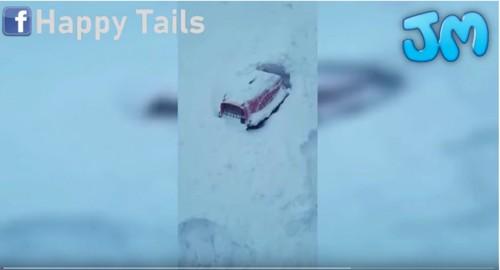 雪に埋れたキャリーケース
