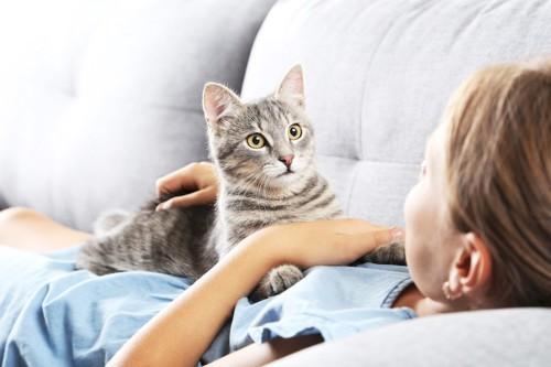 ソファーでくつろぐ飼い主のお腹に乗る猫
