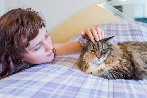 猫をなでる女性