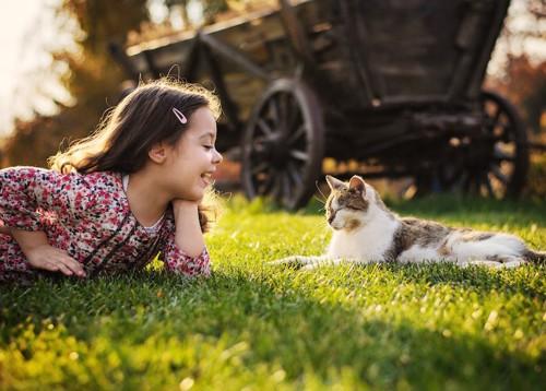 芝生の上で女の子と向かい合う猫