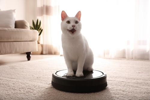 お掃除ロボットに乗る白猫