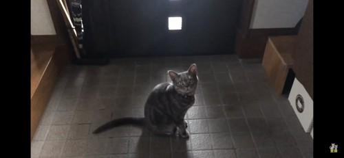 玄関で待つ