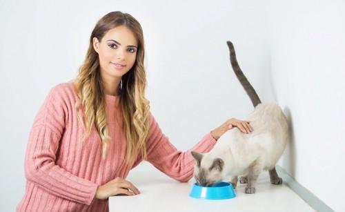 食事中の猫を撫でる女性