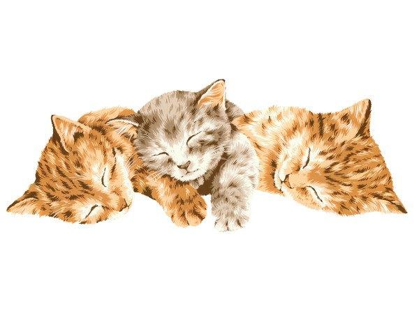三匹の子猫のイラスト