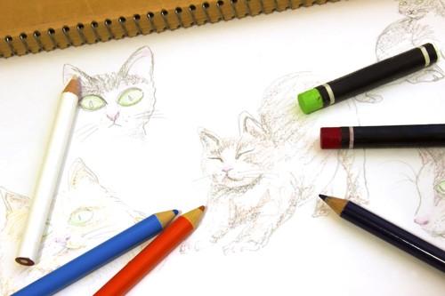 色鉛筆で描かれた猫の絵