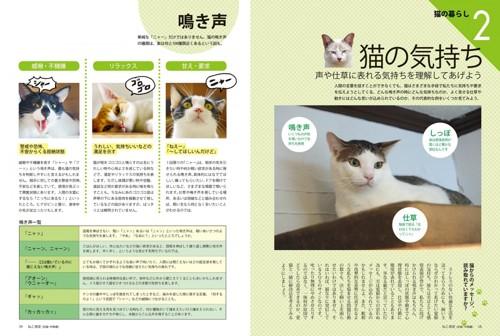 04_ねこ検定公式ガイド「猫の気持ち 鳴き声」