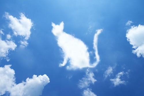 青空に浮かぶ猫の形をした雲