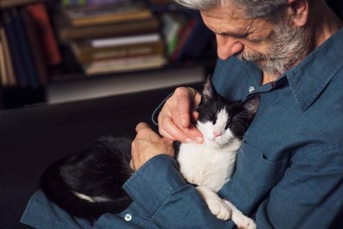 老人と老猫