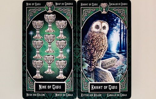 NINEofCUPS/KNIGHTofCUPS