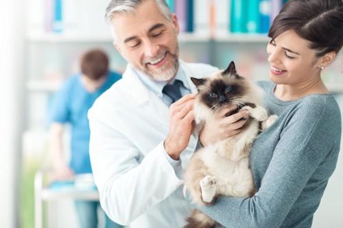 笑顔で猫を抱く女性と獣医師