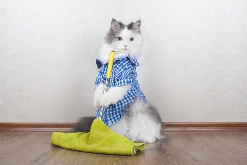 服を着てモップを持つ猫