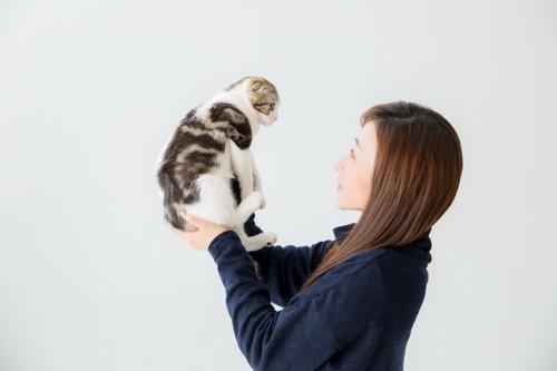 見つめあう猫と人間